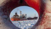 petrolio artico
